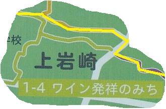ワイン畑.jpg