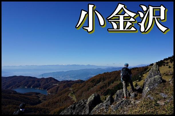 小金沢山表紙.JPG