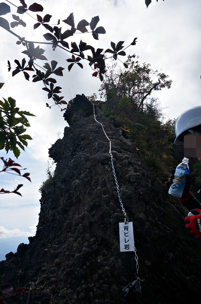 MYOGI (36).JPG
