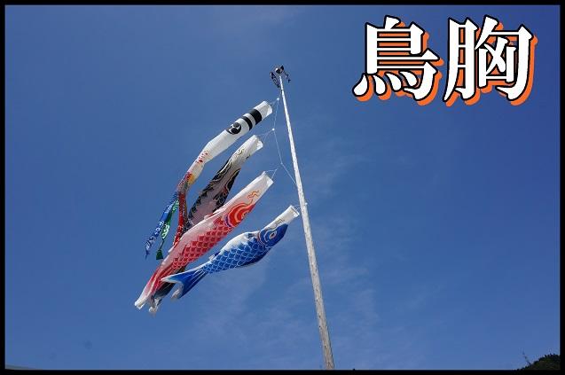 鳥ノ胸山表紙.JPG